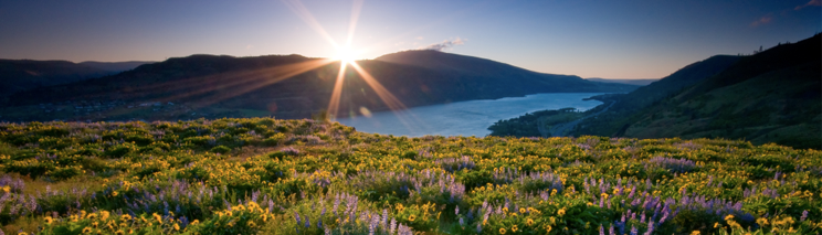 Commemorative Casket USA